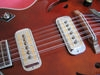 H79_12strings_19.jpg 800x600 - (65 kb)